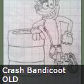 crashynewsold
